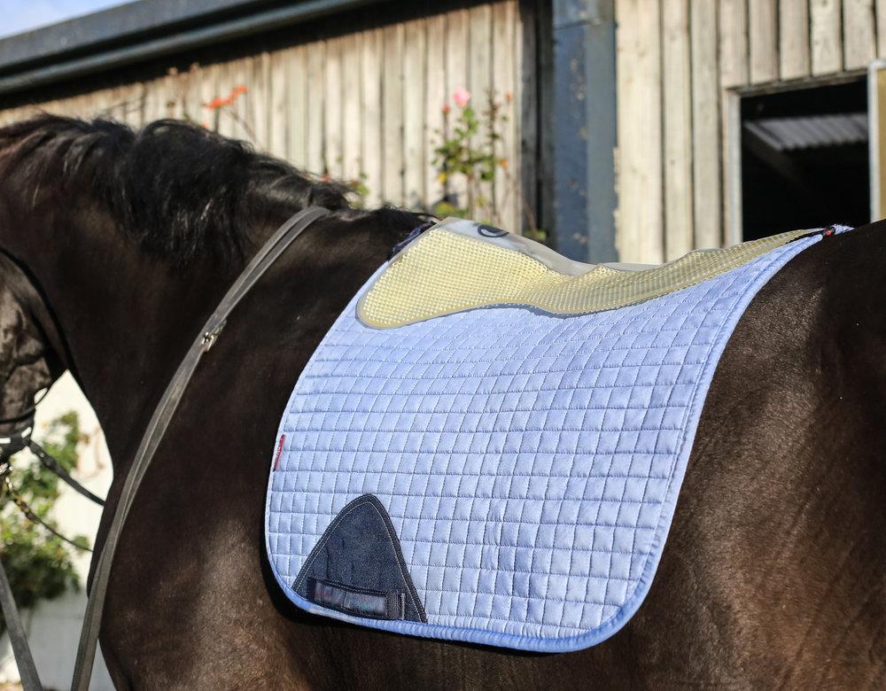 Construit pour le confort - Pour le confort de votre cheval, le Very Important Pad est doux et souple au toucher, et sans bordure pour éviter des points de pression.Le V.I.P se moule au dos de votre cheval comme une seconde peau à profil bas.Avec seulement 8mm d'épaisseur, le V.I.P ne compromet pas la sensation de contact optimale avec le cheval.