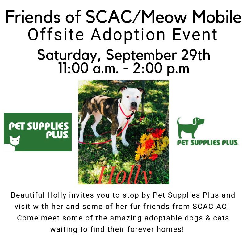 Pet Supplies Plus offsite 9.29.2018.png
