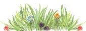 grassclump.jpg