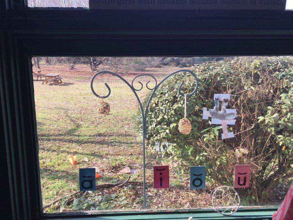 Children watch the bird feeders from the window. -