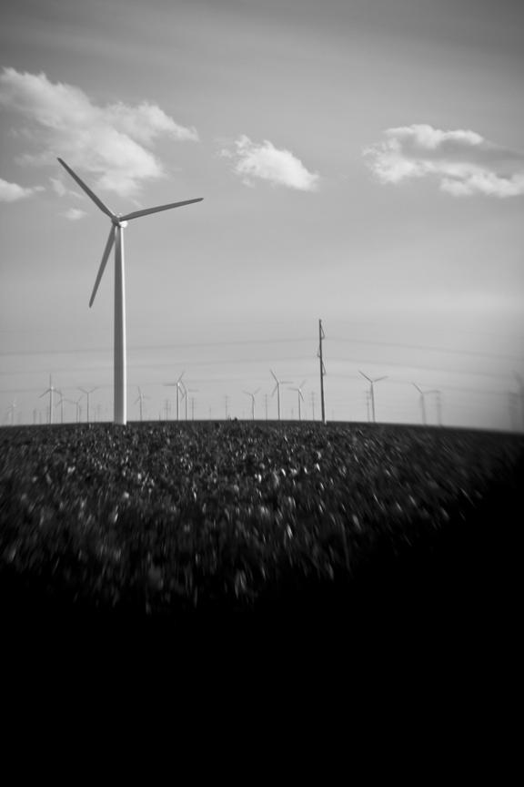 Wind_8455.jpg