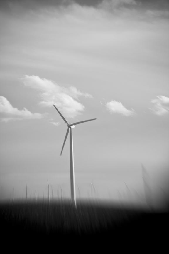 Wind_8461.jpg