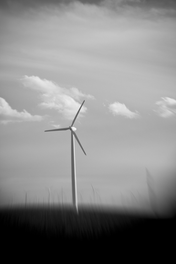 Wind_8462.jpg