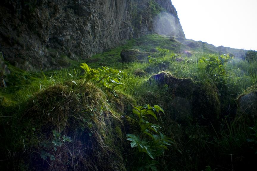 Iceland_4359.jpg
