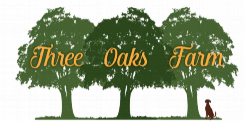 Cavachon Breeder - Three Oaks Farm