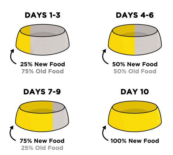 Food Transition Chart