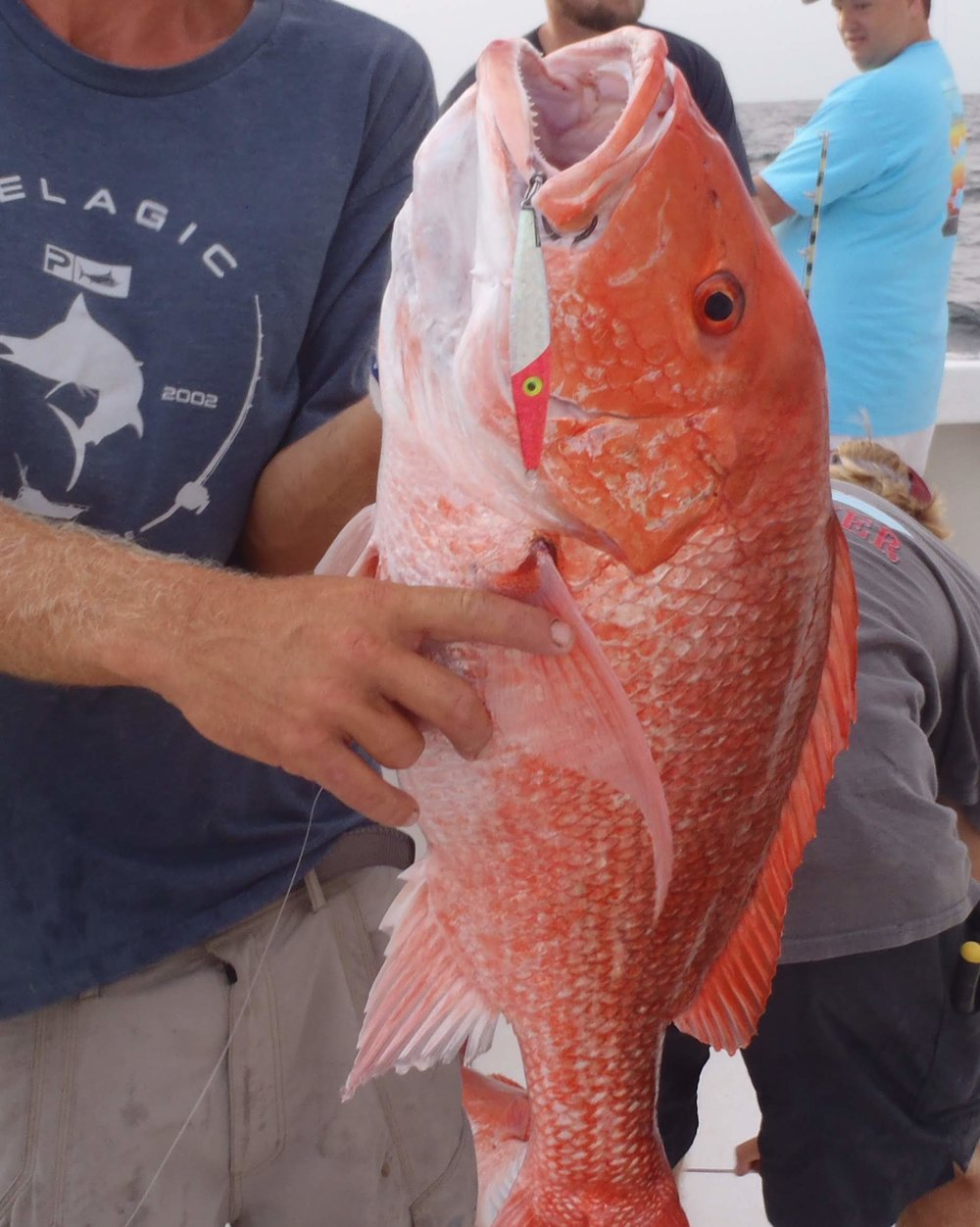 Very nice Red Snapper. 3 oz Fluorescent Pink Glow. RHB