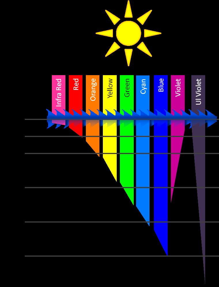 Color Spectrum PNG.png
