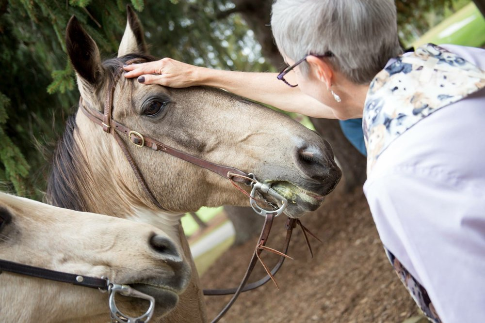 horse and ginny.jpg