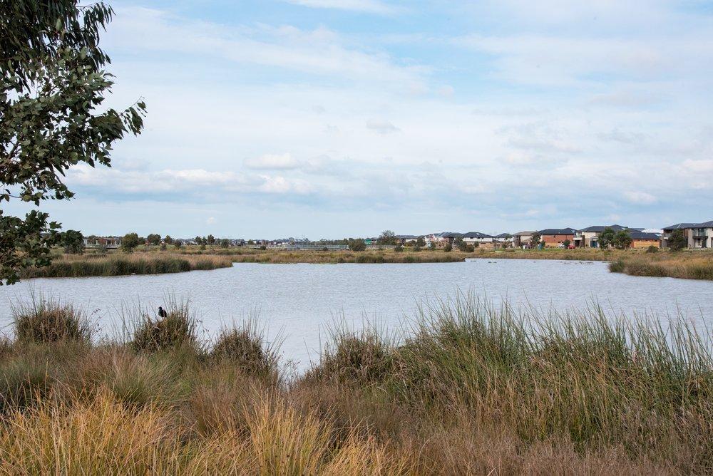 Berwick Waters 5.jpg