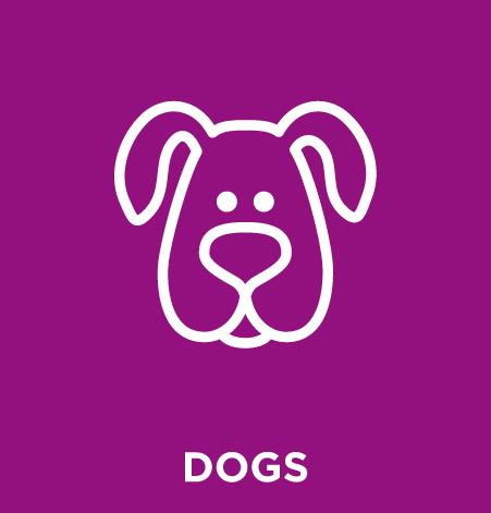 AAPS-DOGS.jpg