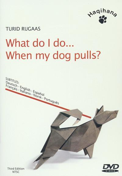 positive-dog-training-dvd-recommendations