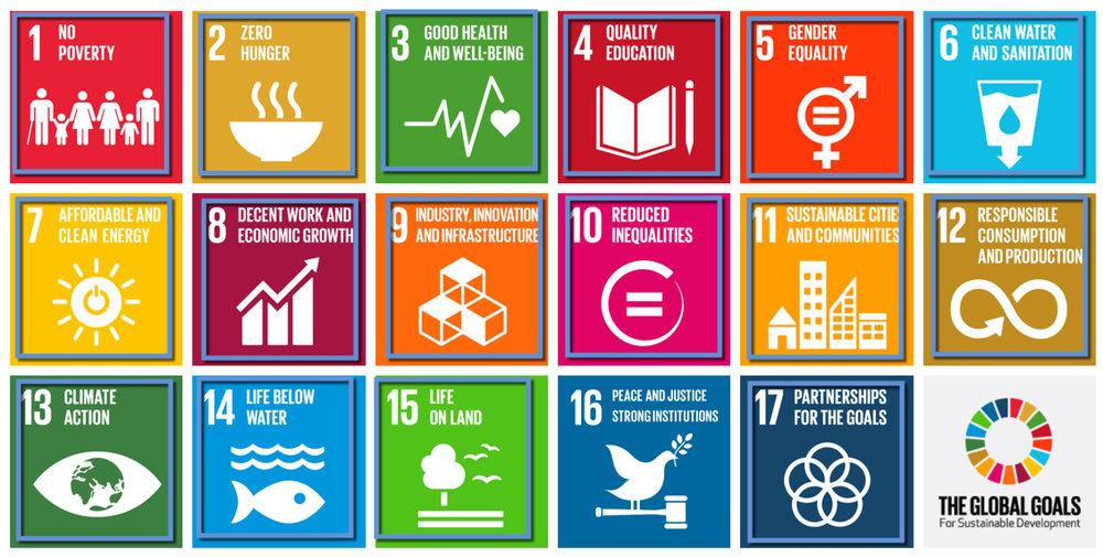 UN SDGs Met.jpg