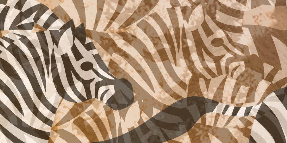 Zebra 5.jpeg