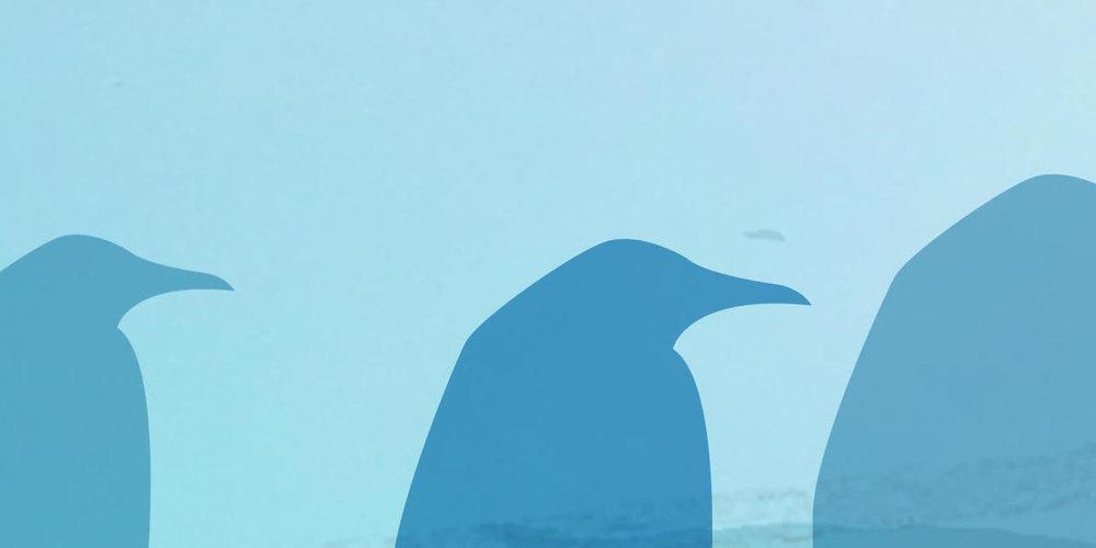 Pingvin 2.jpeg