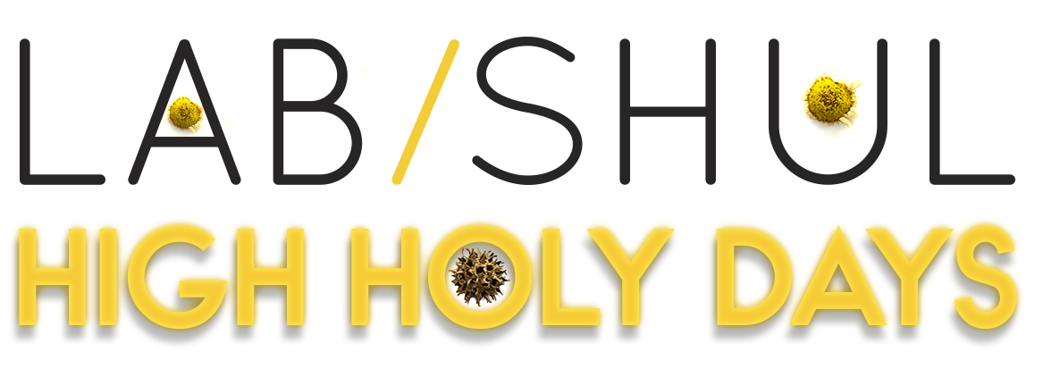 Lab/Shul High Holy Days
