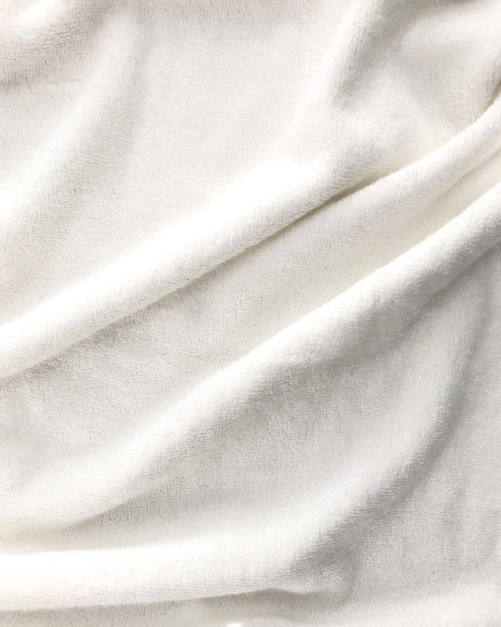 textura oveja.jpg