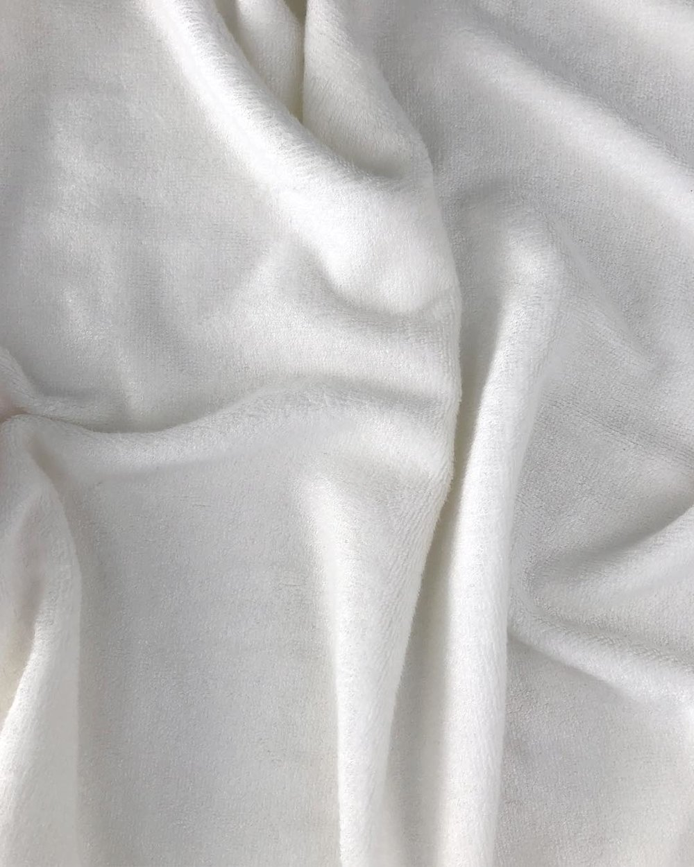textura white bunny.jpg