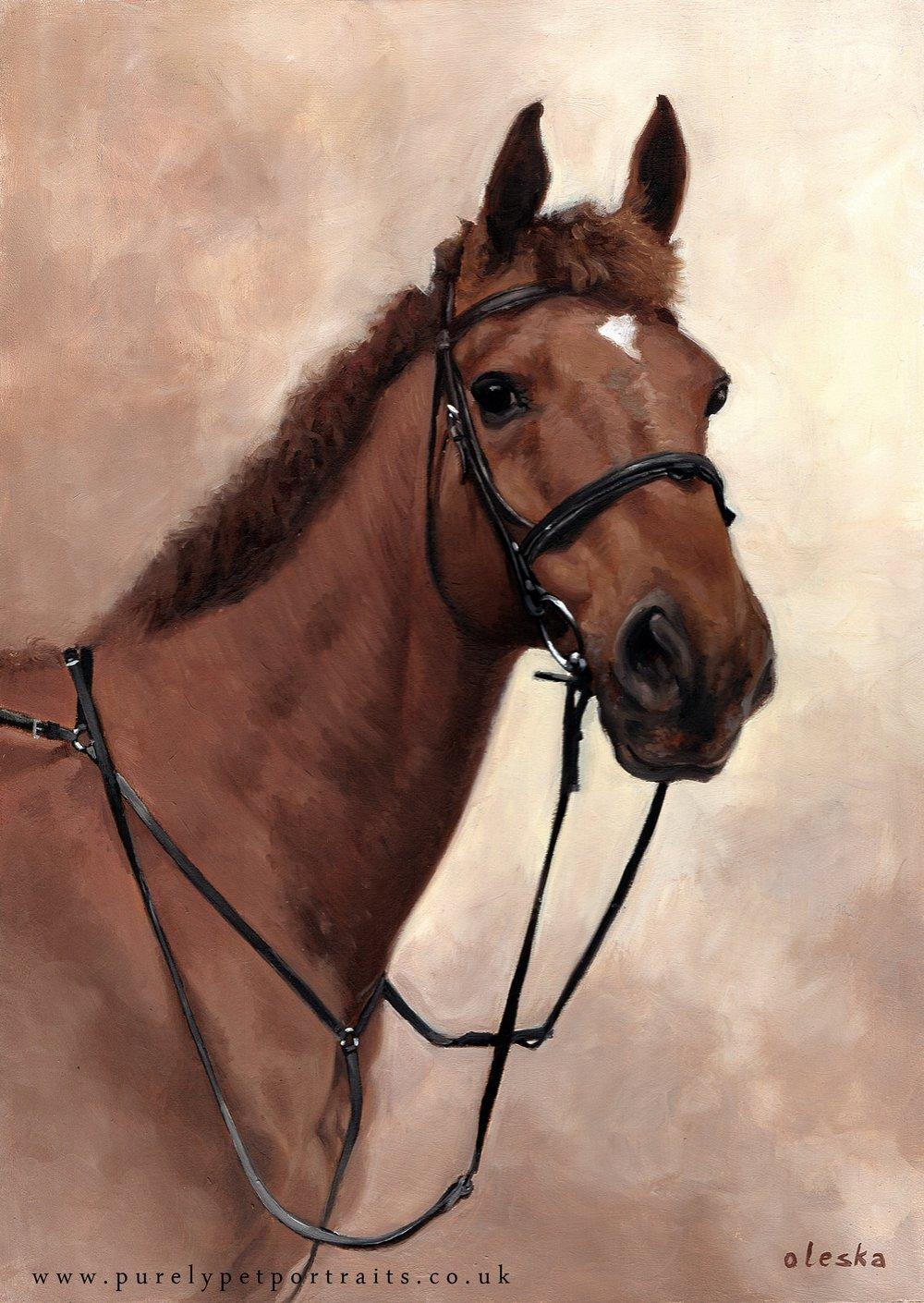 horse-portrait-of-tiger.jpg