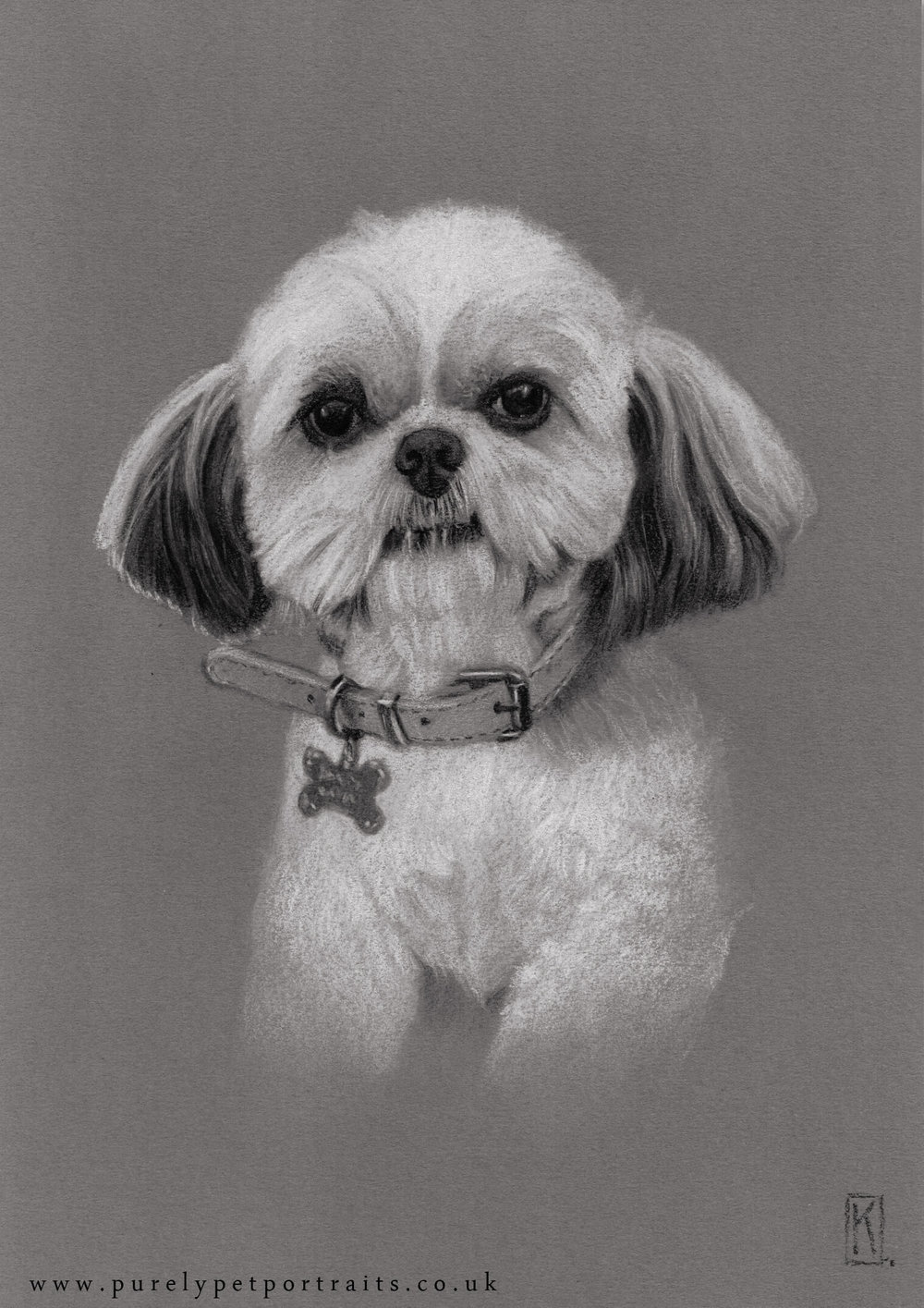 Portrait of Honey by www.purelypetportraits.co.uk