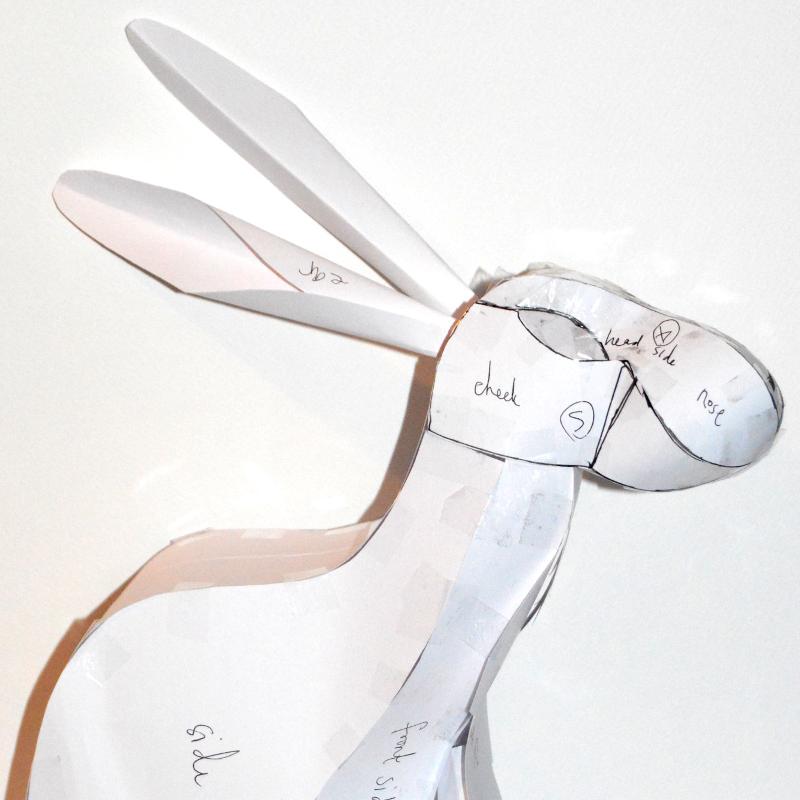 Protoype hare designing