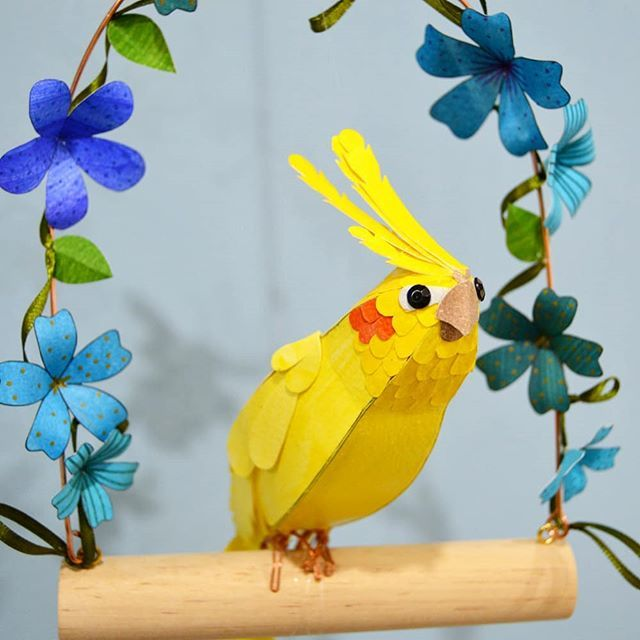 Happy, the Yellow Cockatiel has also been sent to Bessemer 2