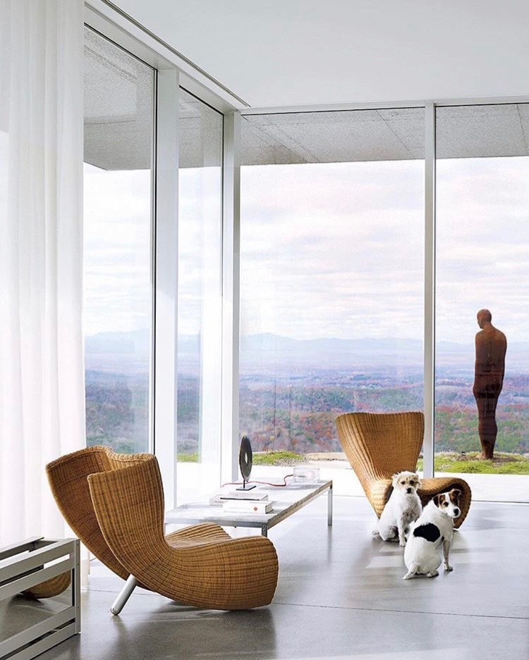 Open Your Blinds - Daylight kills household germs.