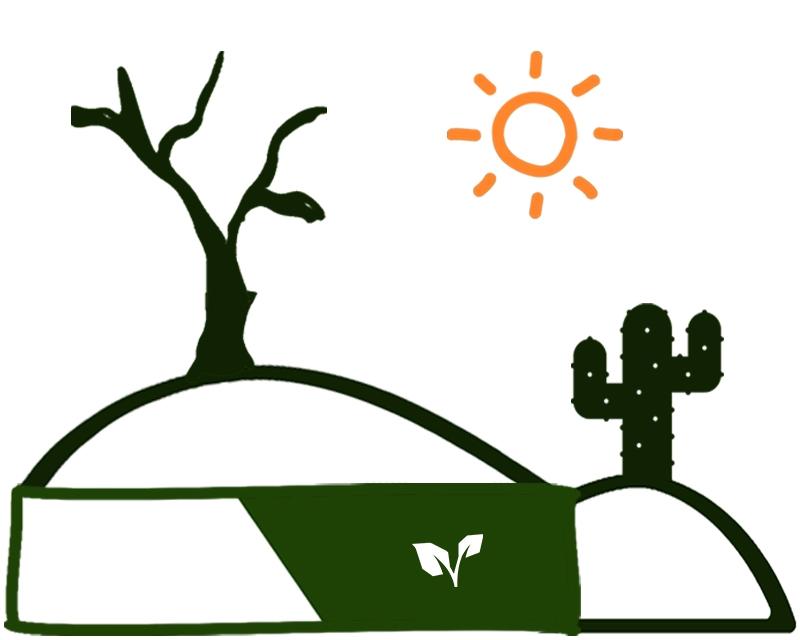 Desert V2.jpg