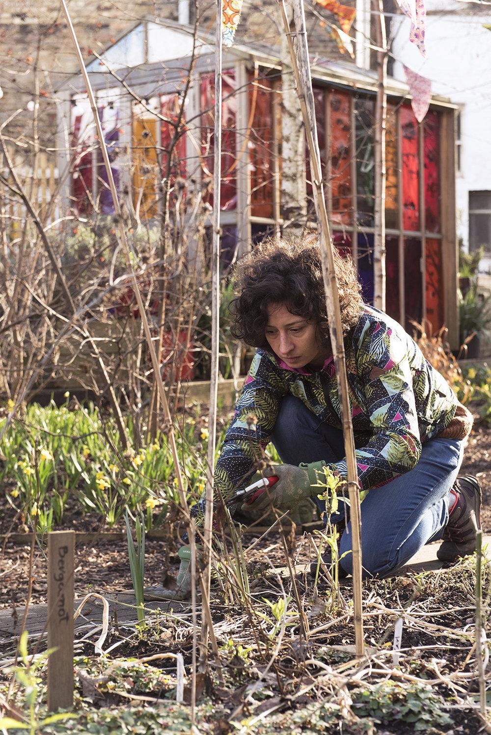 garden_68new.jpg