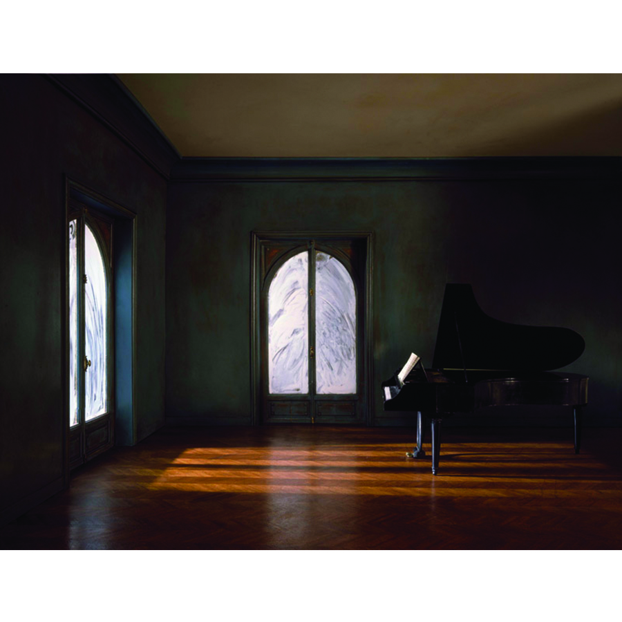 Square - Matton_The Grand Piano Tail in the Whitened Windows Living Room_1986.jpg