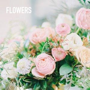 0084-The-Wedding-Co-Market-2018-When-He-Found-Her+TEXT.jpg