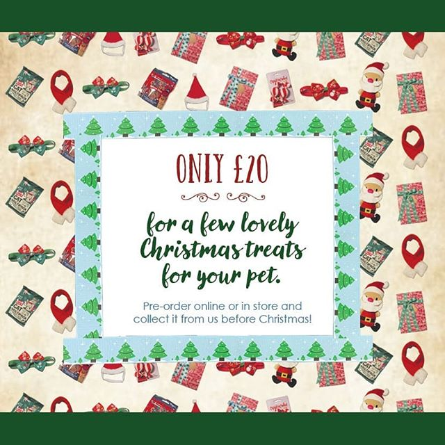Alright 2 weeks till Christmas! Who's counting down? 😍 We have our last few gift packages wrapped and ready in store, message us or drop by to quickly get yours before they all sell out! . . . . . . . . . . #animals #animal #pet #dog #cat #dogs #cats #rabbit #rabbits #hamsters #horses #farm #countryside #photooftheday #cute #pets #instagood #love #nature #animallovers #pets_of_instagram #petstagram #christmas #leightonbuzzard #bedfordshire #miltonkeynes #luton #england #london #unitedkingdom