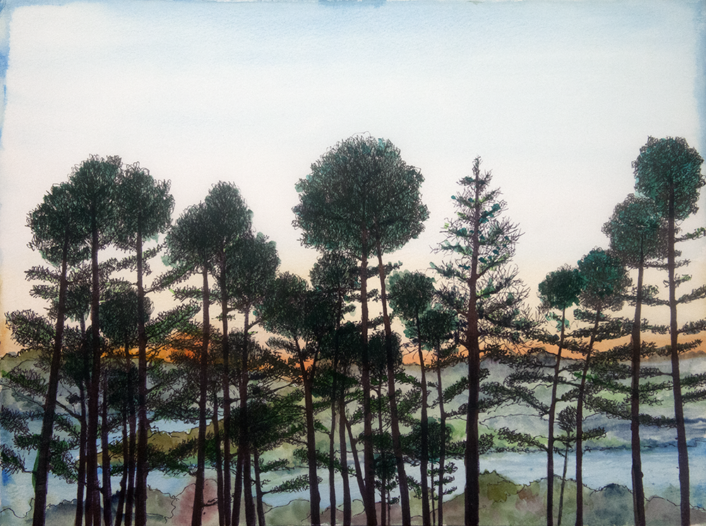 026 sunset through trees 12 x 16.png