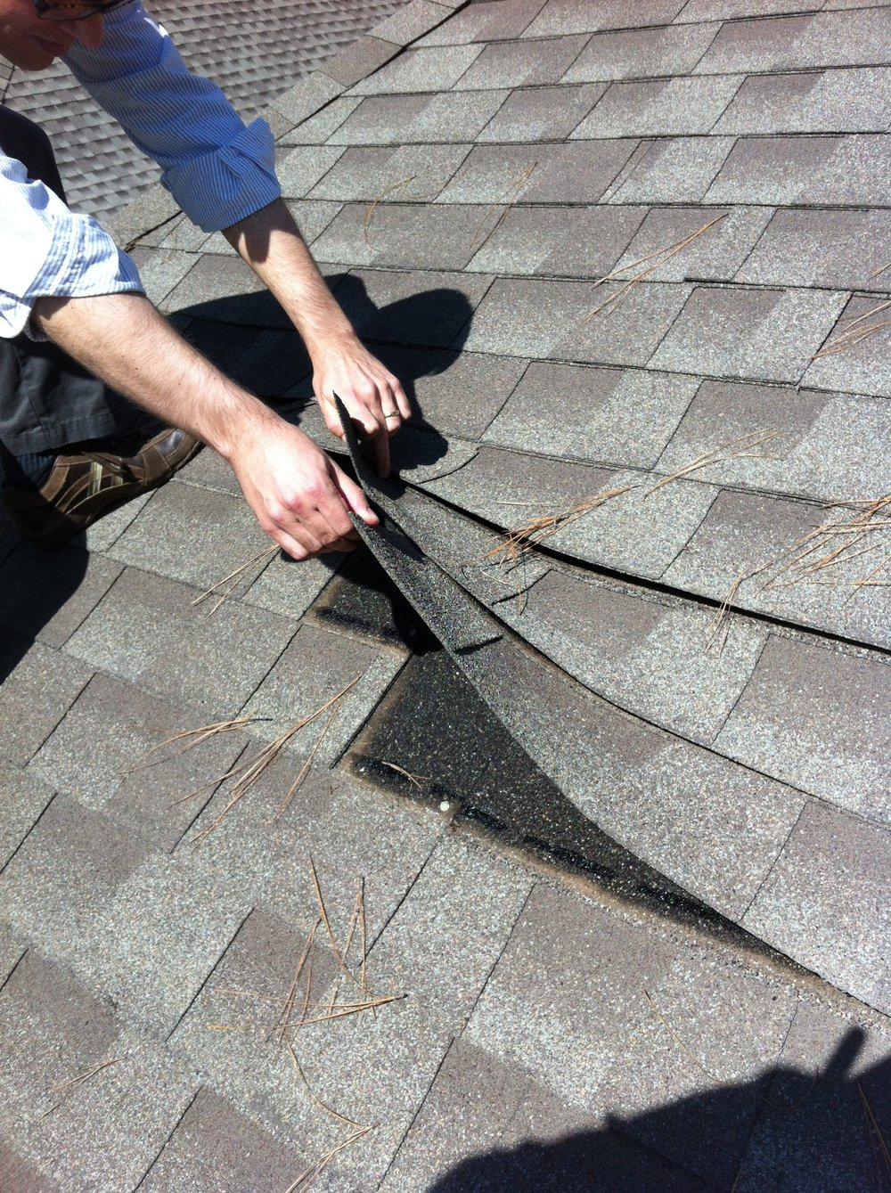 wind damaged shingles pulled through the fastener