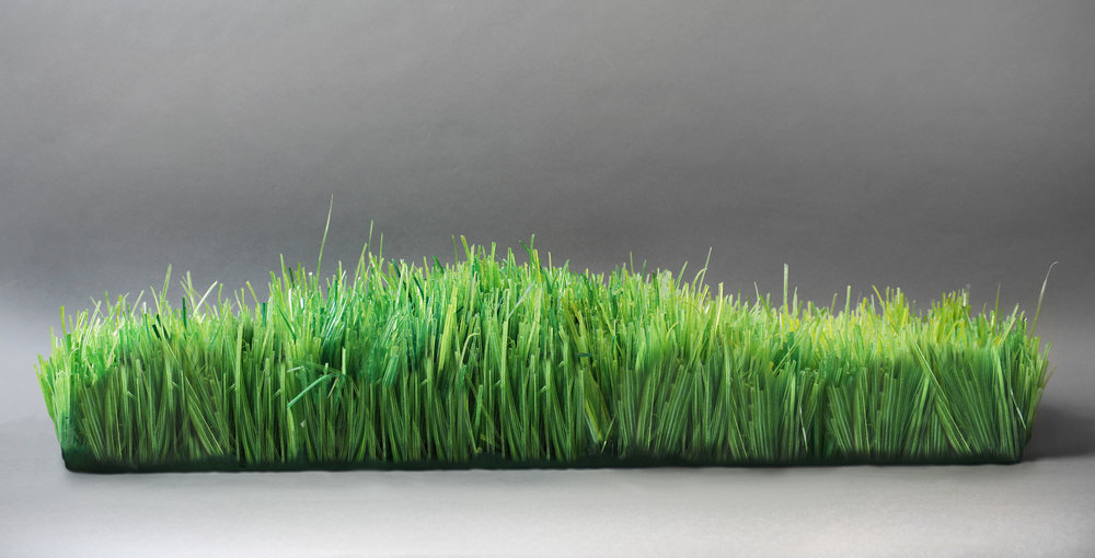 Fox_Greener Grass_flat_2015 copy.jpg