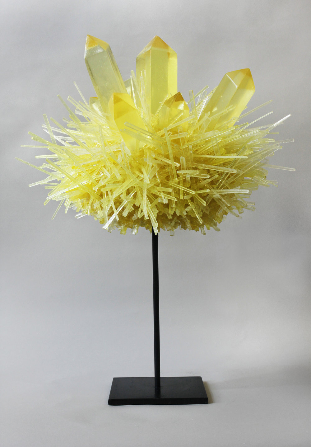 FOX_Yellow Crystal Pom_2013 copy 3.jpg