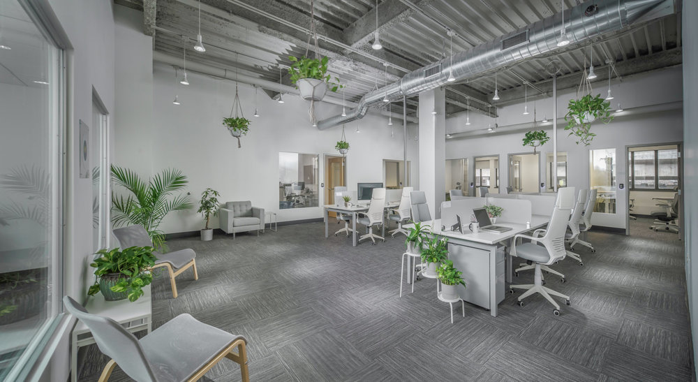 Co-working - Work in a free flowing space, surrounded by ambitious minds, with daily and monthly rates