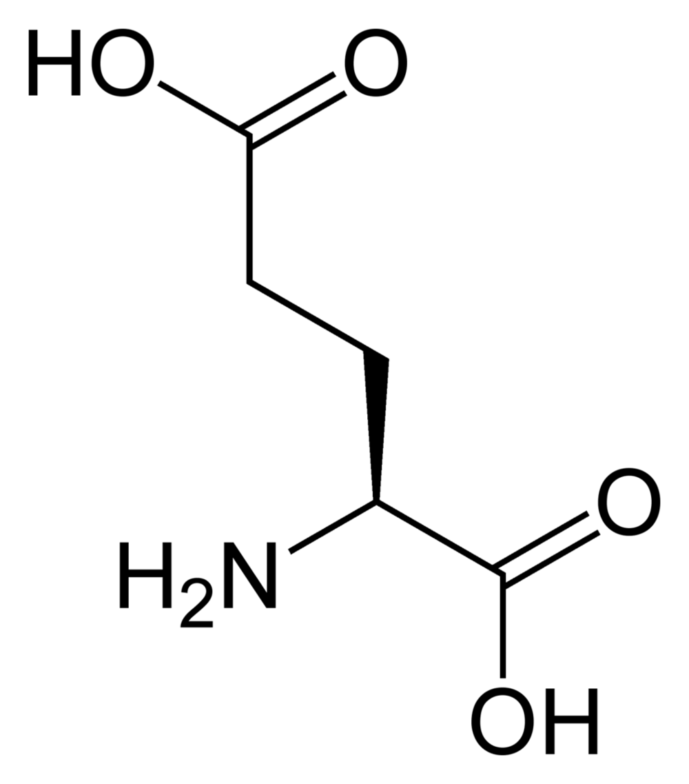L-glutamic-acid-2D-skeletal.png