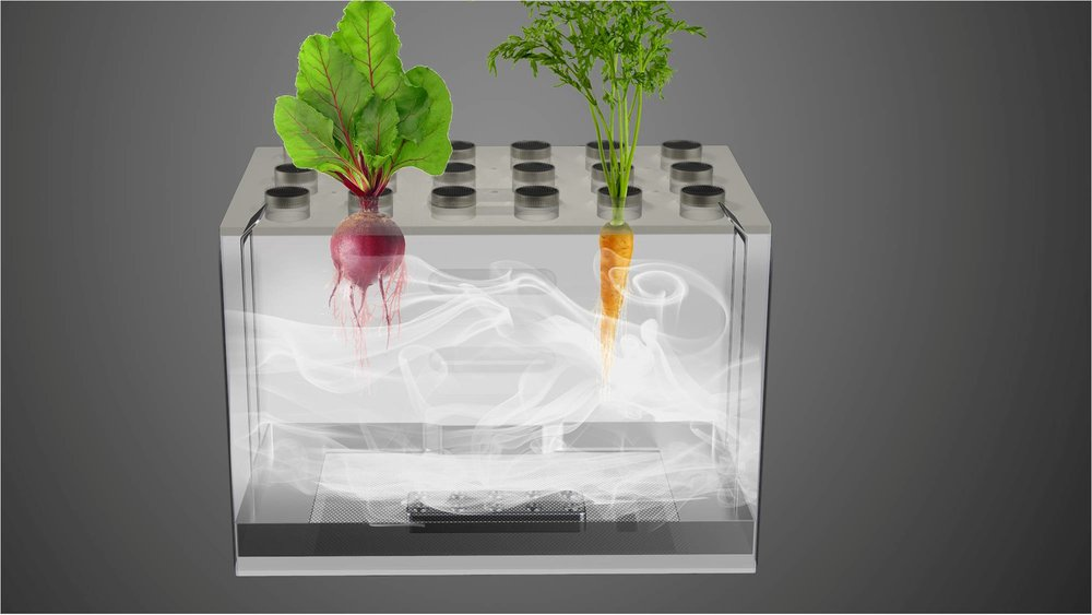 Growth Chamber