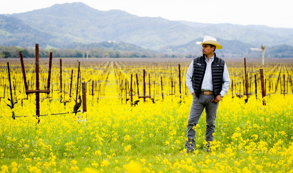 Check Out Our Latino Vintners