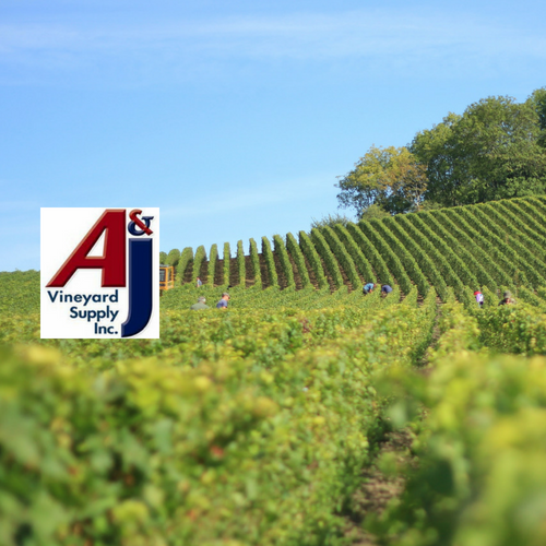 aj vineyard supply sponsor.png