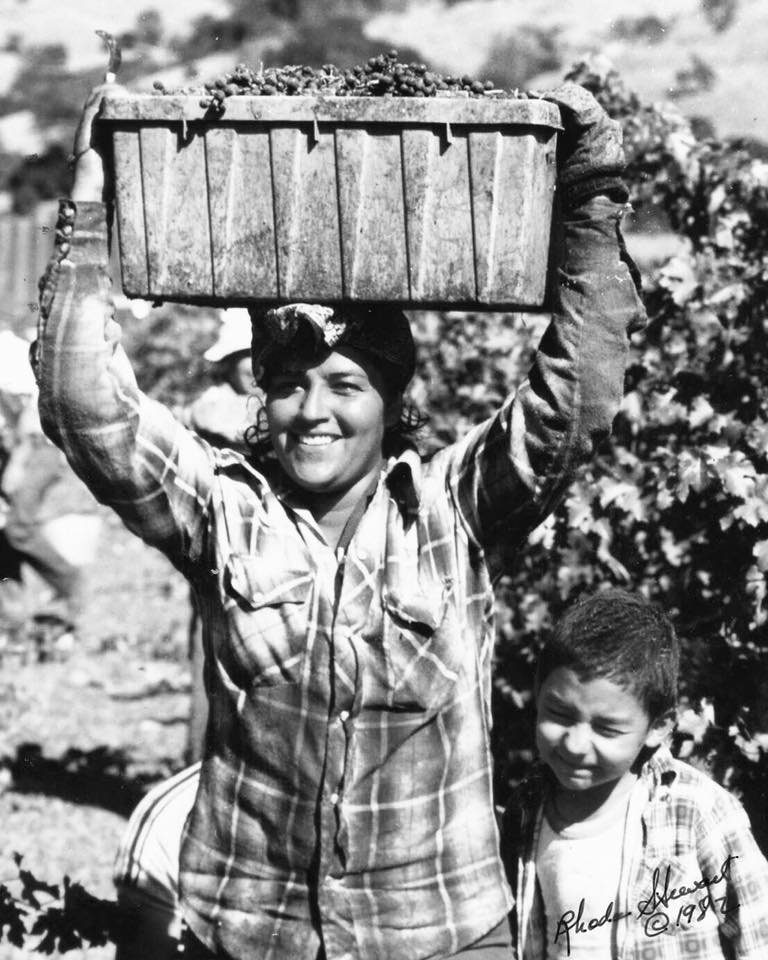 Circa 1982: Herencia Del Valle Winery Owner and MAVA President Guillermo Herrera worked in the vineyards with his mother as a young child.  (Photo:  Herencia Del Valle )