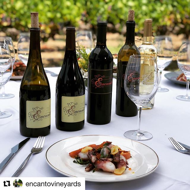 #Repost @encantovineyards 😍🙌 Encanto Wine show with Spencer Christian and Jon Sodini coming soon!! Visit EncantoVineyards.com to learn more.