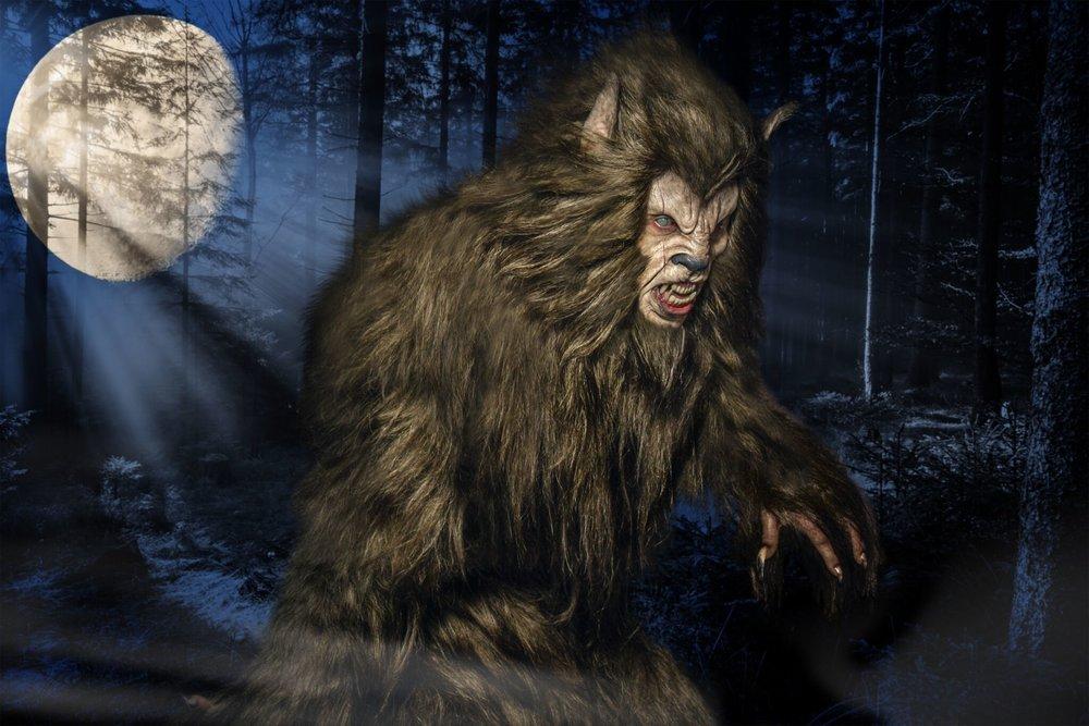 Werewolf Tyler Green.jpeg