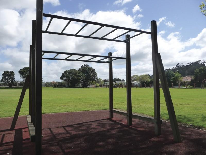 Fitness-Station-Monkey-Bars-800x600.jpg