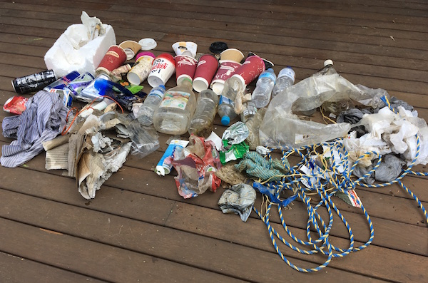 Litter collected from one street in Woodend, November 2018.