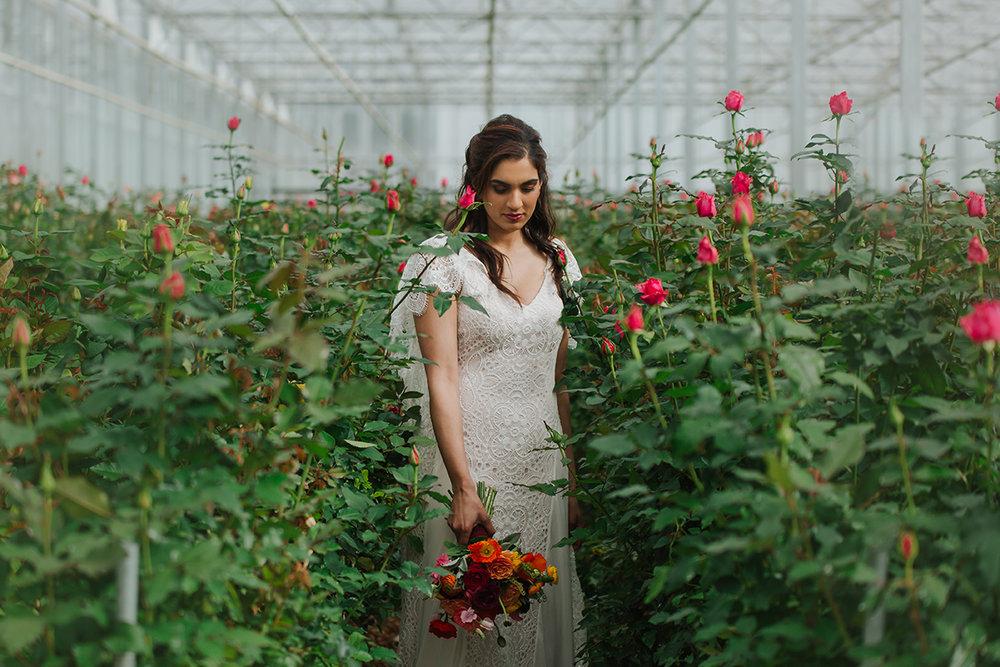 elizabeth may Bridal shoot (15).JPG