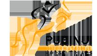 Puhinui-Logo.png