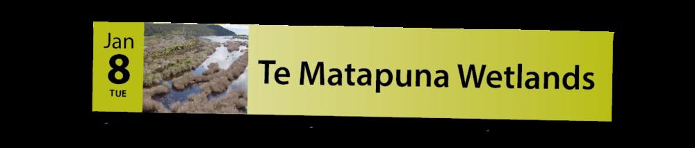 Mahi Aroha Calendar 2019 web Main Banner-05.png