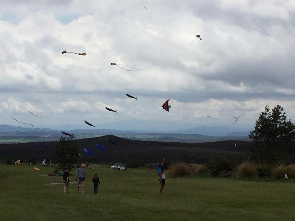 kite day 7 img.jpg